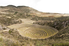 Agricultural terraces. Mystereous agricultural terraces of Moray, Peru Stock Image