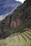Agricultural terraces in Pisac, Peru Royalty Free Stock Images