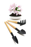 Agricultural tools and flower isolated on white background