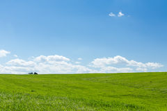 Agricultural tractor working in a green wheat field. At noon Stock Photography