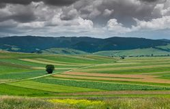 Agricultural Transylvanian landscape, gathering grey storm clouds. On the sky royalty free stock photo