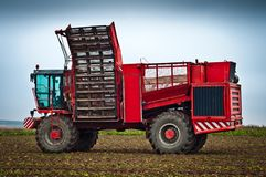 Agricultural vehicle harvesting sugar beet Stock Images