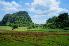 Agricultural views Stock Photo