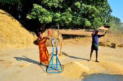 Agricultural winnowing in India Stock Photo