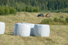 Agricultural work Royalty Free Stock Images