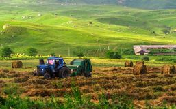 Agricultural work on the harvesting of hay Royalty Free Stock Photos