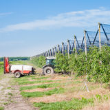 Agricultural work. Royalty Free Stock Photos