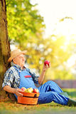 Agricultural worker with basket of apples sitting in orchard and Stock Image