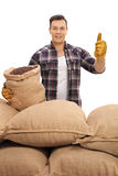 Agricultural worker with burlap sacks giving a thumb up Royalty Free Stock Image
