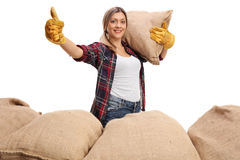 Agricultural worker holding burlap sack and giving thumb up Stock Photography