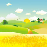 Agriculture. Landscape in summer with sun Royalty Free Stock Photography
