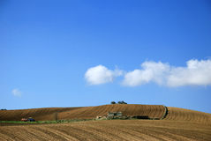 Agriculture. Plowing soil and a blue sky Royalty Free Stock Image