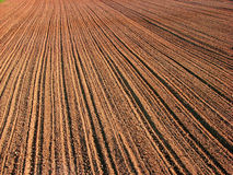 Agriculture. A ploughed field in autumn Royalty Free Stock Photography