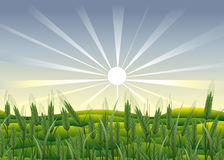 Agriculture. illustration stock