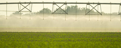 Irrigation on field Royalty Free Stock Images