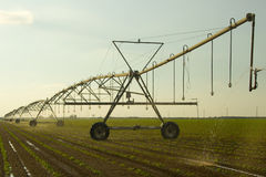 Farm irrigation Royalty Free Stock Image