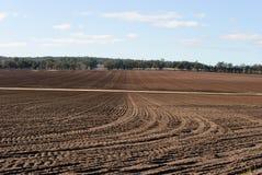 Agriculture Photo libre de droits