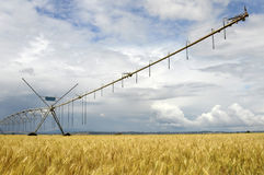 Agriculture. Watering machine with cloudy sky Stock Image