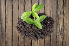Agriculture. Life dirt business currency superannuation environment stock photo