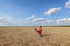 Agriculture, agronomist examine wheat field Stock Photo