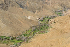 The agriculture along the valley on Atlas in Morocco Stock Image