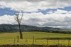 Agriculture in the Andean highlands Royalty Free Stock Images