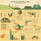 Agriculture, animal husbandry infographics, Vector illustrations Stock Image