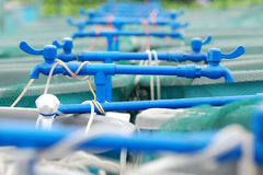 Agriculture aquaculture farm. Agriculture aquaculture water system farm royalty free stock photos