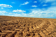Agriculture arable land field in the spring for crops. The agriculture arable land field in the spring for crops Royalty Free Stock Images