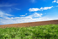 Agriculture arable land field in the spring for crops Stock Images