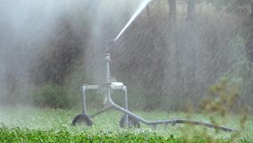 Agriculture, automatic irrigation stock video