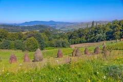 Agriculture avec l'herbe de pré sèche sur la pente d'une grande colline Wildflowers de floraison et élevage dans la distance Image libre de droits