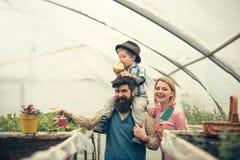 Agriculture avec la famille heureuse famille heureuse garder l'agriculture agriculture avec la famille heureuse en serre chaude a photo libre de droits