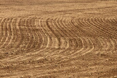 Agriculture background - plowed field Royalty Free Stock Photography