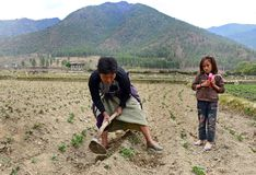 Agriculture of Bhutan Royalty Free Stock Photo
