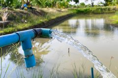 Agriculture blue pipe with groundwater gushing. In pond stock photos
