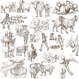 Agriculture, cheese - hand drawn full sized pack Royalty Free Stock Images