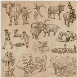 Agriculture, Cheesemaking - hand drawn vector set. Royalty Free Stock Photo