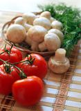 Agriculture, Cherry, Tomatoes Royalty Free Stock Photos