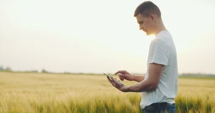 Agriculture - Close up of farmer using digital tablet stock video