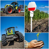 Agriculture collage Stock Photo