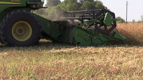 Agriculture combine harvest ripe dry pea plants grow in field. Agriculture combine machine harvest ripe dry pea plants grow in farm field. Follow shot on Canon stock footage