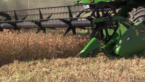 Agriculture combine machine harvest ripe dry pea grow. SIRVINTOS, LITHUANIA - August 3, 2014: Agriculture combine machine harvest ripe dry pea grow in farm field stock footage
