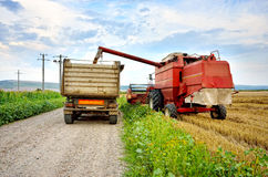 Agriculture. Combine unload the crop Royalty Free Stock Photography