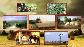Agriculture composition. Countryside activities collage on background stock video