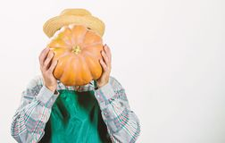 Agriculture concept. Farmer guy carry big pumpkin. Locally grown foods. Local farm. Farmer lifestyle professional royalty free stock image