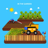 Agriculture Concept Illustration Stock Photography