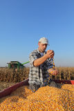 Agriculture, corn harvest, farmer and crop Royalty Free Stock Image