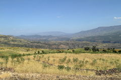 Agriculture and crop fields in Ethiopia Stock Images