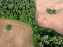 Agriculture cultivated fields and forest in spring, aerial. Agriculture farm cultivated fields and forest in spring, aerial view royalty free stock image